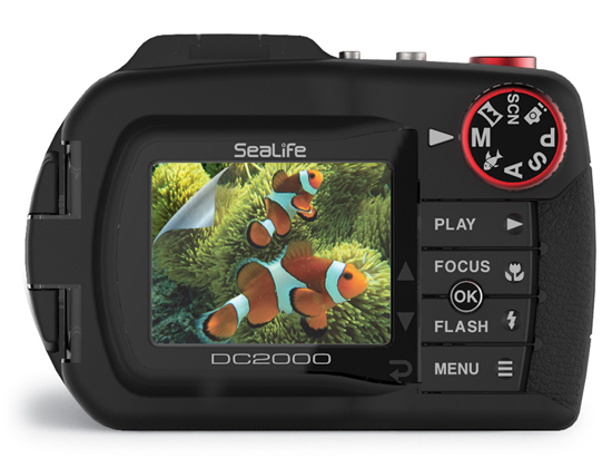 SEA LIFE - Screen Shield Schutzfolie 7,6cm